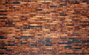 TEXTURE, wall, brick, MASONRY