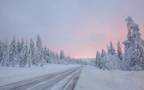 hiver, route, arbres, coucher du soleil, Finlande, paysage