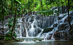 waterfall, forest, trees, Rocks, nature