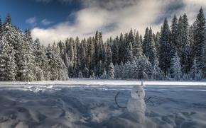 Yosemite National Park, California, Национальный парк Йосемити, Йосемити, Калифорния, зима, снег, лес, деревья, ели, снеговик