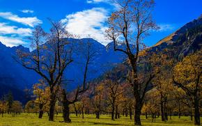 Ahornboden, Karwendelgebirge, Austria, Bavarian landscape, nature, reserve, landscape, field, Mountains, trees