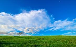 поле, холмы, небо, облака, пейзаж