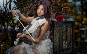 girl, Asian, violin, lantern, rose, mood