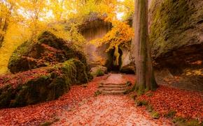 autumn, park, road, Rocks, trees, stage, landscape
