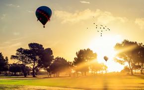 DAWN, campo, árboles, globo, bandada de pájaros, paisaje