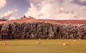 campo, Hills, Toscana, Italia