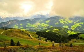Wildschönau, Austria, field, Hills, road, trees, landscape