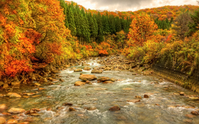 autumn, river, stones, forest, trees, landscape, Indian summer