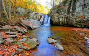 autunno, cascata, Rocce, alberi, natura, Kilgore Cascate, Maryland, autunno
