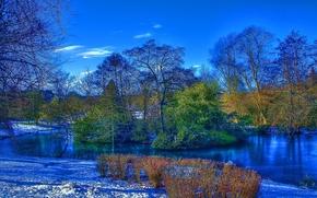 осень, снег, пруд, остров, деревья, пейзаж