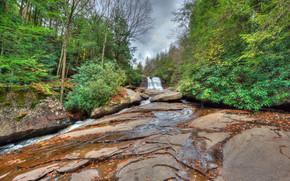 речка, водопад, скалы, лес, деревья, природа, Muddy falls waterfall, Maryland