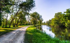 stradale, piccolo fiume, alberi, paesaggio, Zucchero Fiume, Brodhead, Wisconsin