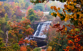 autunno, cascata, alberi, paesaggio, Albion Cascate, Hamilton, Canada
