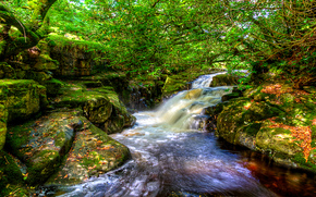 small river, waterfall, Rocks, trees, nature
