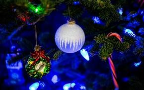 abete, Giocattoli, Palloncini, luci, Capodanno