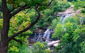 Albion Cascate, Hamilton, Canada, cascata, Rocce, alberi, paesaggio
