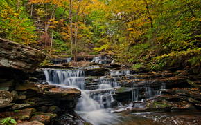 autumn, forest, trees, waterfall, Rocks, nature