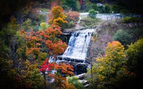 Cadute di Albion, Hamilton, Ontario, Canada, autunno, cascata, alberi, paesaggio