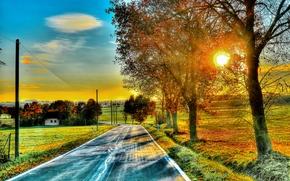 sunset, road, trees, cabin, field, landscape