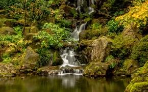 日本庭園, ワシントンパーク, ポートランド, オレゴン州, 滝