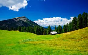 campo, Hills, Montañas, árboles, casa, paisaje