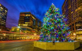 Evanston, Wyoming, USA, Capodanno, abete