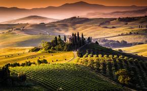 Belvedere, Toscana, Spagna, tramonto, Colline, paesaggio