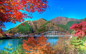 autumn leaves, lake, Tanzawa, japan, landscape