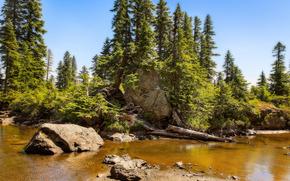 Rampart Ridge, New Zealand, деревья, скалы, стоячая вода, пейзаж