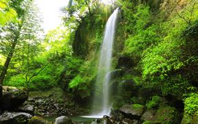 лес, деревья, водопад, скалы, камни, природа