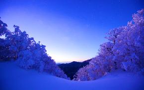 tramonto, Montagne, inverno, nevicata, alberi, paesaggio
