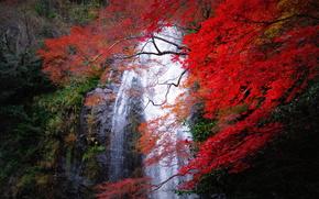Minoh Cascada, Minoh, Osaka, Japón