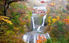 Fukuroda Cascate, Daigo, Jaapan, autunno, cascata, alberi, natura