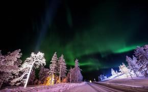 道路, 阿卡斯罗姆, 芬兰, 北极光, 树, 景观