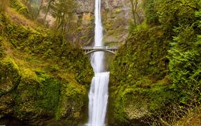 Multnomah Falls, Oregon, Columbia River Gorge, горы, водопад, мост, деревья, пейзаж