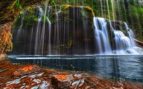 Bajo Lewis River Falls, Bosque Nacional, Estado de Washington, cascada, paisaje