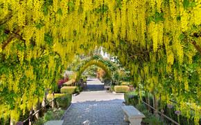 Сад в Лэнгли, штат Вашингтон, деревья, цветы, арка