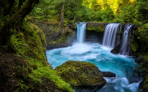 Spirit Falls, Little White Salmon River, Columbia River Gorge, Washington, ущелье реки Колумбия, штат Вашингтон, водопад, река, лес
