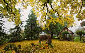 осень, сад, днревья, домик, пейзаж