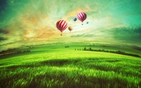 sunset, field, Balloons