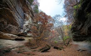 LaSalle Canyon Starved Rock State Park, Rocce, alberi, autunno, paesaggio