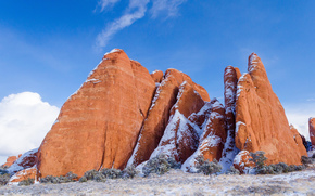 Arches National Park, Rocks, arbres, paysage