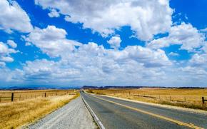 道路, 场, 天空, 云, 景观