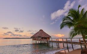 Bocas del Toro, Panama, закат, море, пальма, пейзаж