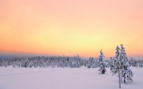 salida del sol, Äkäslompolo, Laponia, puesta del sol, invierno, árboles, paisaje