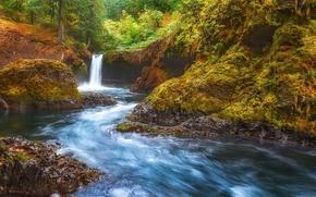 Spirit Falls, Columbia River Gorge, waterfall, nature