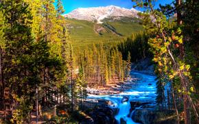 Sunwapta Falls, Rocky Mountain, Canada.река.горы, деревья, пейзаж