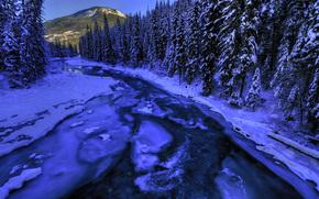 зима, река, деревья, пейзаж