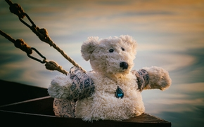 Teddy Bear, bear, toy, pendant, Ropes, Titanic