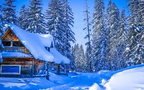 Amut, Region Khabarovskiy, Rosja, Winter Wonderland, zima, las, śnieg, zaspy, dom, drzew, krajobraz